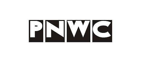 PN-Logo-130920 - cnnnopia.jpg