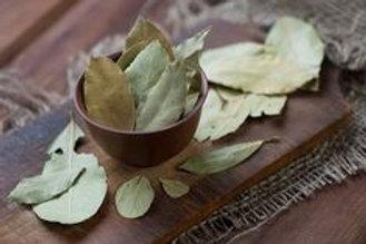 Bay Laurel Leaf