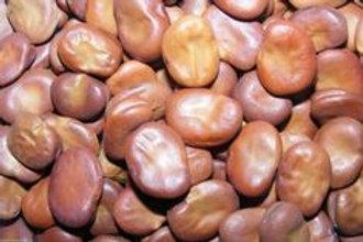 Mojo Bean