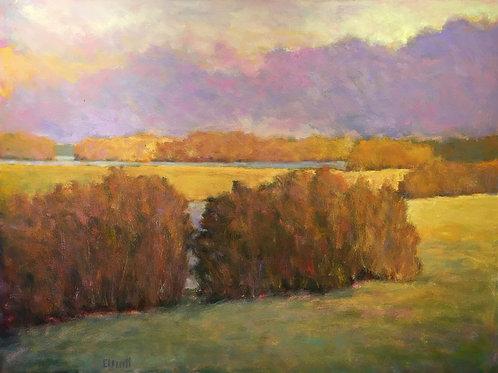 At the Marsh, Light Effect