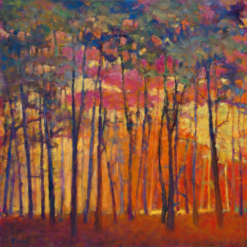 Through the Orange Forest - Signed, limited edition giclee