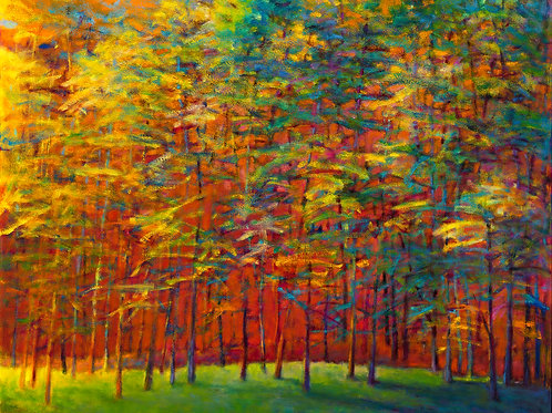 Heat in the Back of the Forest - Signed, limited edition giclee