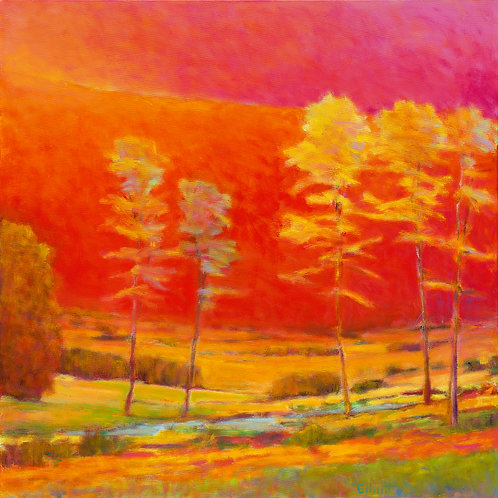 Gathering Light - Signed, limited edition giclee