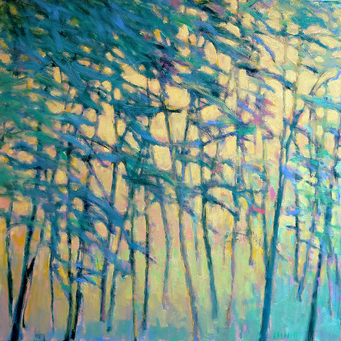 Air Through the Forest  - Signed, limited edition giclee
