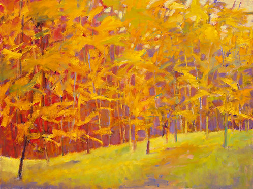 Yellows with Reds Insisting - Signed, limited edition giclee