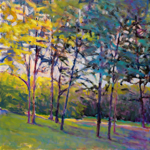 Trees in Half Shade - Signed, limited edition giclee