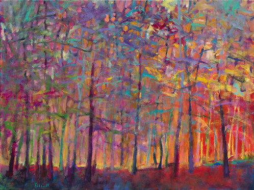 Chromatic Forest - Signed, limited edition giclee