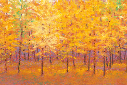 Autumn Wall - Signed, limited edition giclee