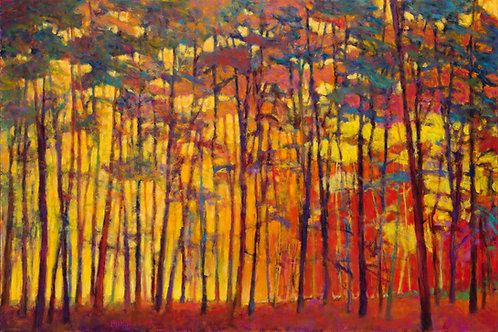Brightly Lit Woods, oil on canvas, 48 x 72 inches,