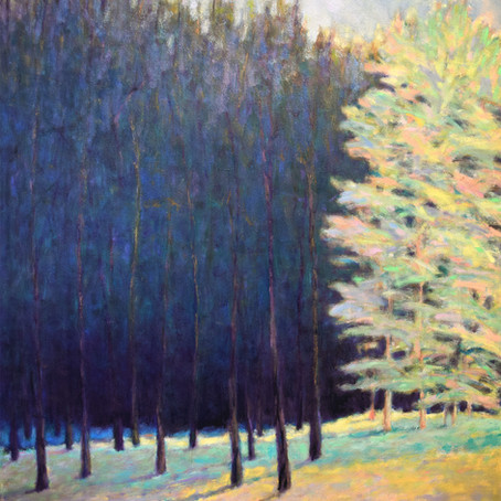 New work: Forest Revealed, 60 x 48 inches