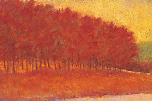 Red Tree Line - Signed, limited edition giclee