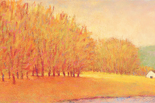Butterscotch Trees - Signed, limited edition giclee