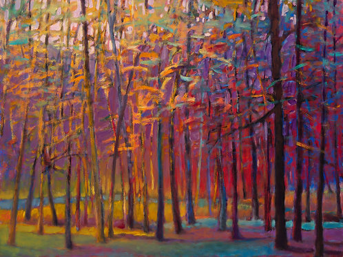 Orange and Red Woods- Signed, limited edition giclee