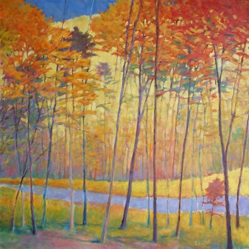 Creek Yellows