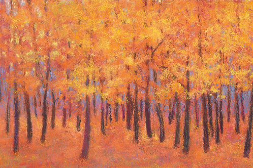 Autumn Light - Signed, limited edition giclee
