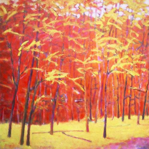 Autumn Bold
