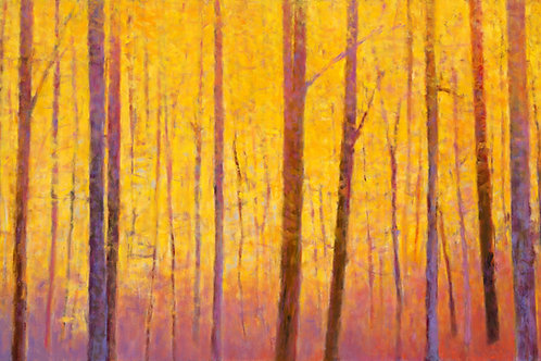 Yellow Wall - Signed, limited edition giclee