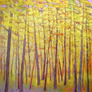 Soft Yellow Forest oil 40 x 40.jpg