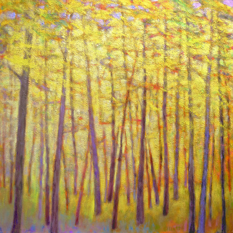 New work: Soft Yellow Forest, oil on canvas, 40 x 40 inches