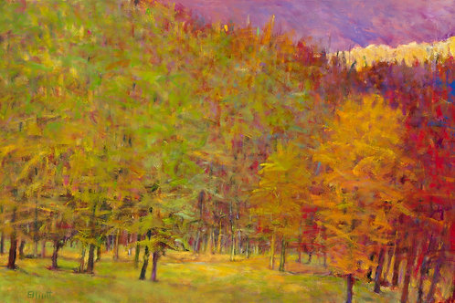 Fall Imposing - Signed, limited edition giclee