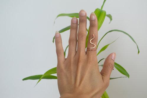 The Nani ring