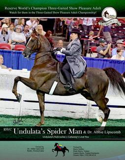 RWC Undulata's Spiderman