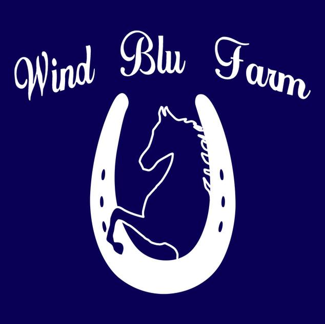 wind blu icon.jpg
