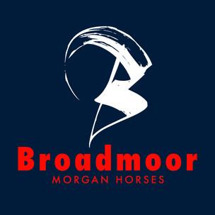 Broadmoor Morgan Horses