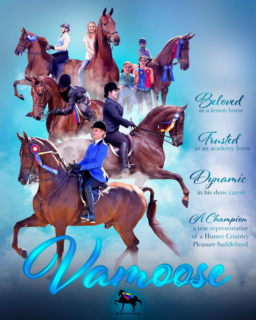 Vamoose