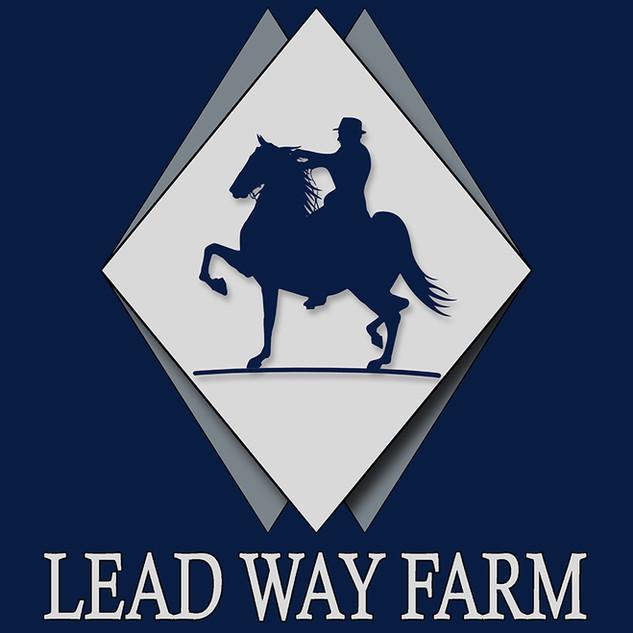 lead way.jpg