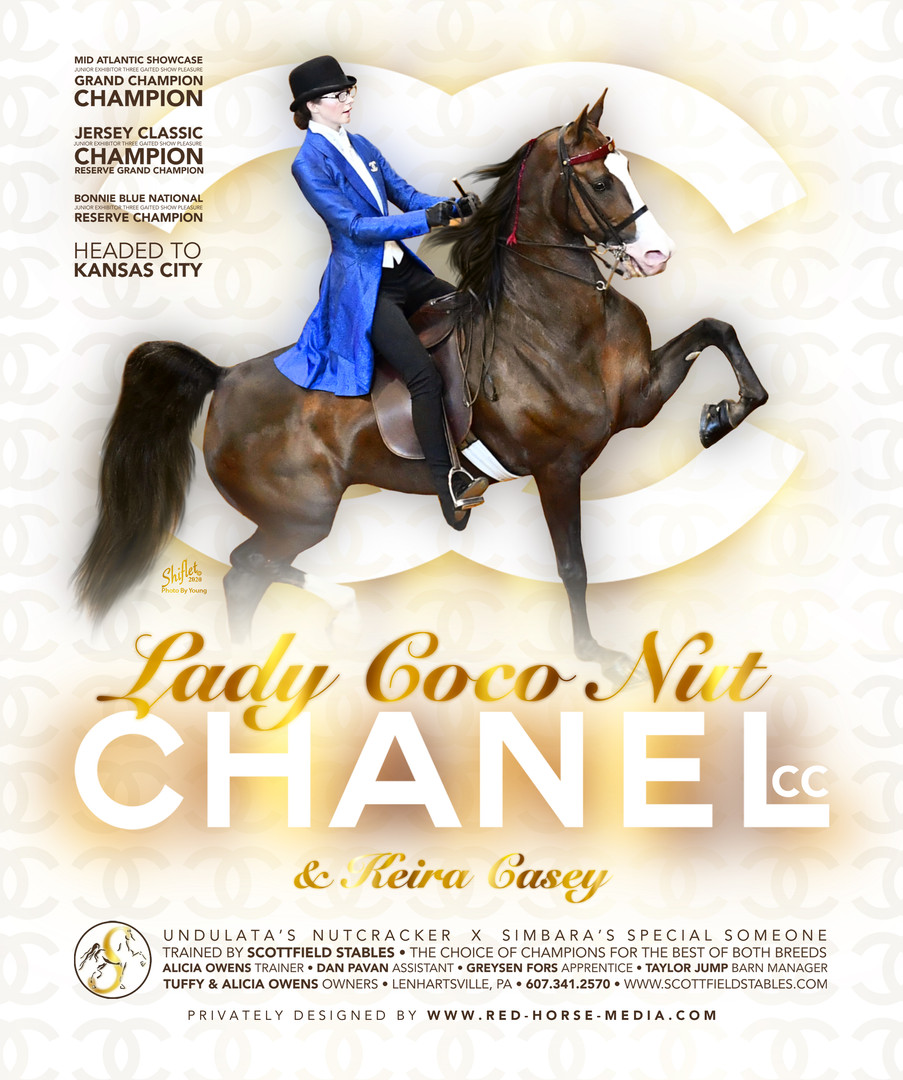 Lady Coco Nut Chanel Michelle Mahon.jpg