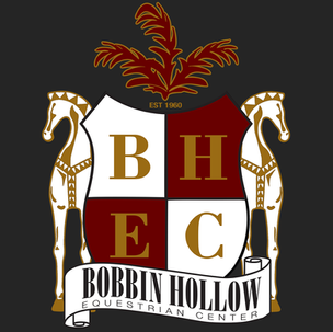 BH icon.png