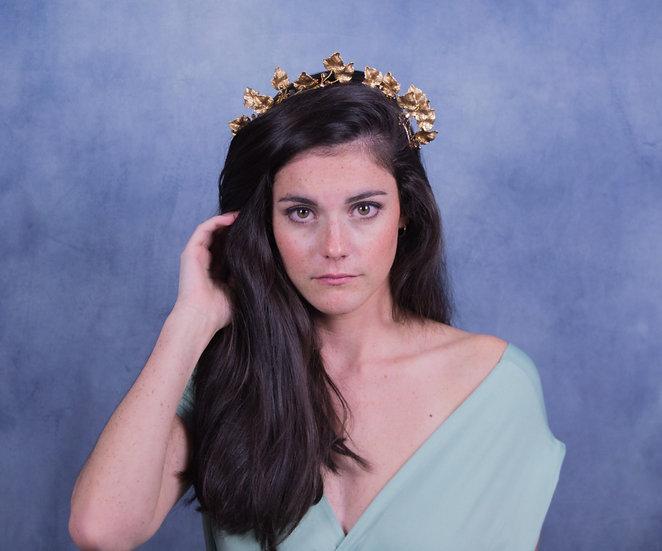Diadema 'Athena'