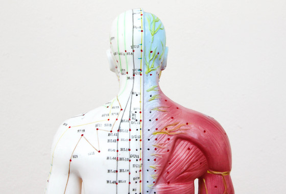 On where of the body acupuncture works