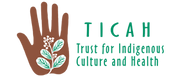 logo_ticah2.png
