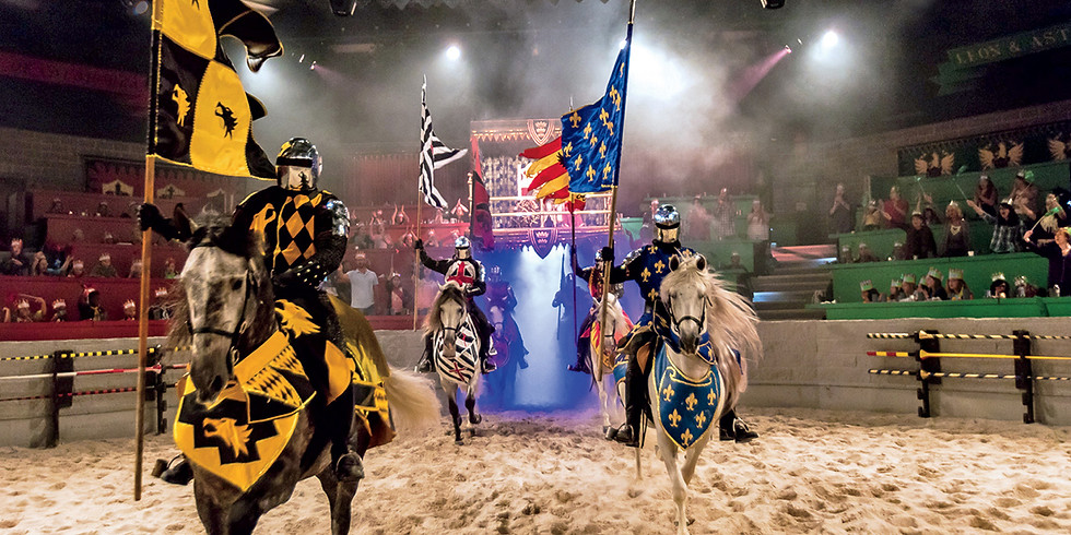 Medieval Times Party!