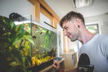 ITečkárske akvárium