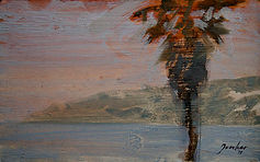 robberg palm.jpg