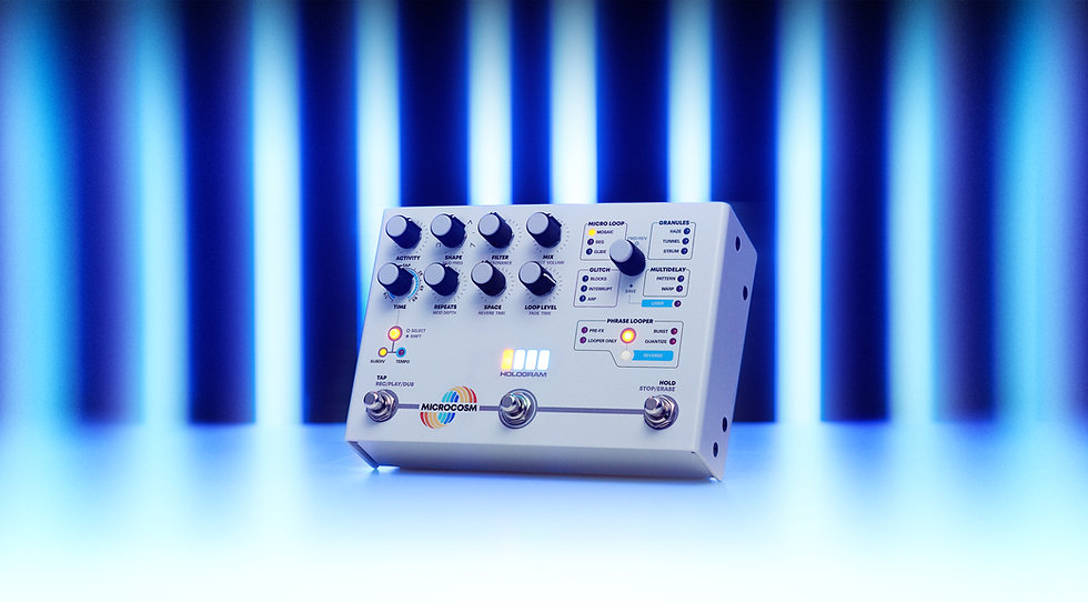 Hologram Electronics Microcosm Effects Pedal