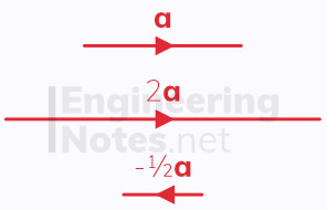 Multiplying vectors by scalars, vector multiplication. A-level Maths Notes, GCSE Maths. EngineeringNotes.net, EngineeringNotes, Engineering Notes