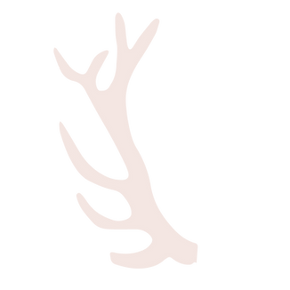 Deer Anteler-01.png