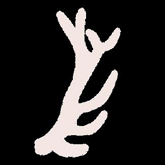 Deer-Antlers.png