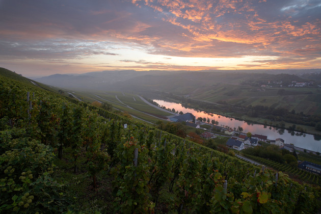 Wormeldange Moselle