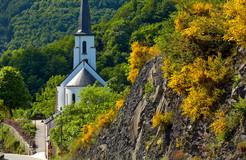 Kautenbach church with  broom flower