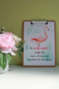 Flamingo A4 ph00001.jpg