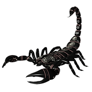 scorpion_PNG12138.png