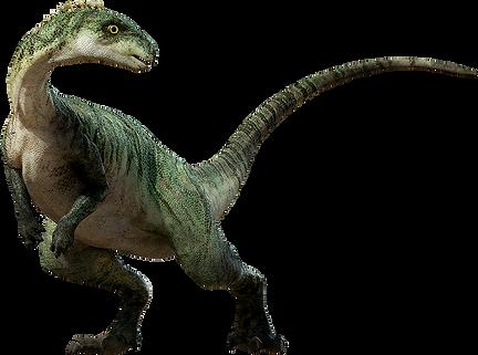 Dinosaur-PNG-Image.png