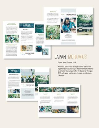Moriumius Brochure Design