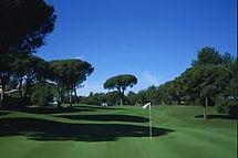 golfesterel.jpg