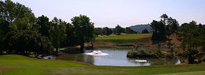 golfderoquebrune1.jpg